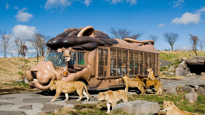 큐슈자연동물공원 아프리칸사파리